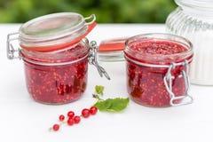 Zugebereitete Marmelade in den Gläsern Lizenzfreie Stockbilder