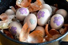Zugebereitete Ostereier für das Sterben mit Zwiebel lizenzfreies stockfoto