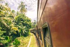 Zugreise in Sri Lanka mit schönen Ansichten über Palmen stockfoto