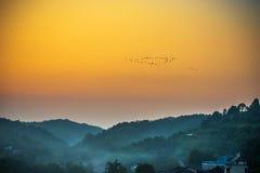 Zugvogel im schönen Sonnenunterganghimmel Lizenzfreies Stockbild