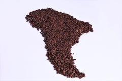 Zuid-Amerika dat met koffie wordt bedekt Stock Fotografie