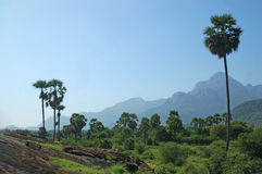 Zuid- India royalty-vrije stock foto