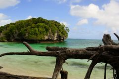 Zuid-Pacifisch strand Stock Foto