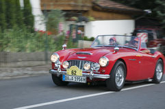 Zuid-Tirol klassieke cars_ AUSTIN HEALEY 100 Stock Afbeelding