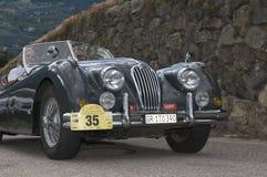Zuid-Tirol klassieke cars_2014_Jaguar XK 140 Le Mans Royalty-vrije Stock Foto