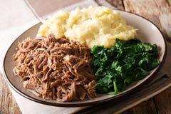 Zuidafrikaans voedsel: - Seswaa verscheurd rundvlees met sadzahavermoutpap a stock afbeeldingen