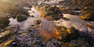 Zuidafrikaanse kustlijn stock afbeelding
