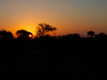Zuidafrikaanse zonsondergang Stock Fotografie