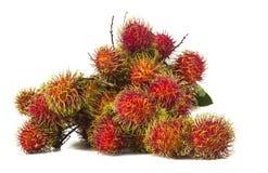 Zuidamerikaans exotisch fruit Stock Fotografie
