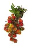 Zuidamerikaans exotisch fruit Royalty-vrije Stock Foto