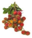 Zuidamerikaans exotisch fruit Royalty-vrije Stock Afbeelding