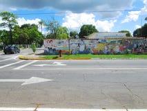 Zuidamerikaanse straatkunst, Venezuela Stock Afbeeldingen