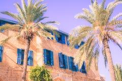 Zuidelijk huis met blauwe gekleurde vensters dichtbij gestemde palmen stock foto's