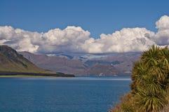 Zuidelijke Alpen, Nieuw Zeeland Stock Foto's