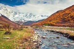 Zuidelijke uitlopers van berg Shkhara stock afbeelding