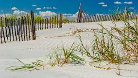Zuiden Carolina Sand Dunes Stock Afbeeldingen