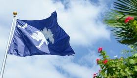 Zuiden Carolina State Flag met hemelachtergrond en palm met rode bloemen Stock Foto