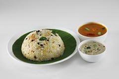 Zuiden Indisch voedsel royalty-vrije stock foto
