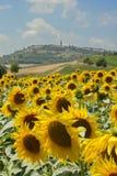 Zuiden van Frankrijk Stock Afbeelding