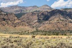 Zuiden Warner Wilderness stock afbeelding