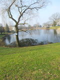 Zuiderpark Стоковая Фотография RF