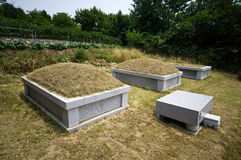 Zuidkoreaanse graven Royalty-vrije Stock Foto
