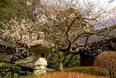 Zuiho-вертеп, Sendai, Япония стоковое изображение
