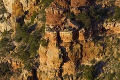 Zuilvormige die rotsvormingen van Grand Canyon van Navajo Poin worden bekeken Royalty-vrije Stock Fotografie