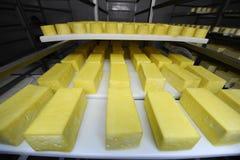 Zuivelfabriek stock afbeeldingen