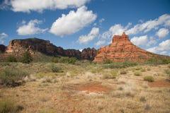 Zuiver Arizona Royalty-vrije Stock Afbeelding