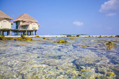 Zuiver water van oceaan en blauwe hemel Stock Fotografie