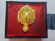 zuivere gouden schildpad stock foto