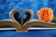 Zuivere Liefde Stock Afbeelding