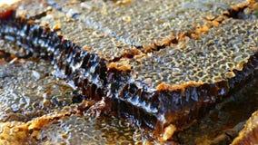 Zuivere natuurlijke honing voor menselijke gezondheden, honingraat voor ontbijt, in de de honingraathoning van de glaskom, stock video