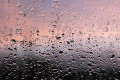 Zuivere regendruppels op een venster met klamboe Stock Fotografie