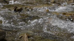 Zuivere stroom van bergrivier onder steenachtige kusten Langzame Motie stock videobeelden