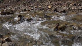 Zuivere stroom van bergrivier onder steenachtige kusten Natuurlijk landschap stock videobeelden