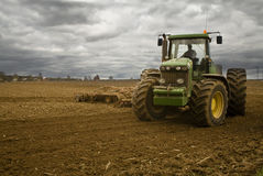 Zukünftige Getreide Stockbilder