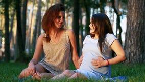 Zukünftige Mutter und ihr der Freund, die auf Gras sitzt, erreichen einen Tiefstand stock video footage