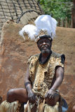 Zulu chief Royalty Free Stock Photos