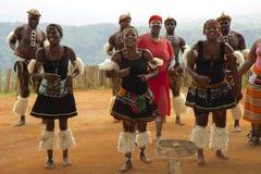 Zulu- Stammes- Tanz in Südafrika lizenzfreies stockfoto