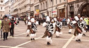 Zulu Warriors Part of the Lord Mayor's Show. Zulu Warrior Dancers from the Mighty Zulu Nation Theatre Company, and Traditionally Dressed English Man, part of the Stock Images