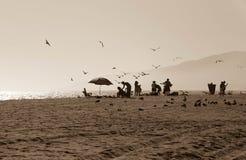 Zuma Beach California Royalty Free Stock Photography