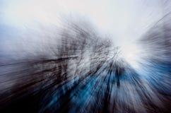 Zumando attraverso gli alberi Immagini Stock