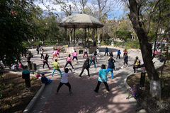 Zumba in the park Stock Image