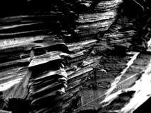 Zumbido da madeira imagens de stock royalty free