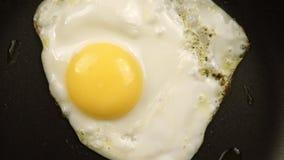 Zumbir do ovos fritos na bandeja vídeos de arquivo