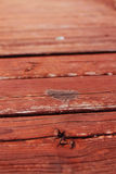 Zummi su legno Fotografie Stock