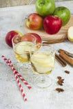 Zumo de manzana orgánico fresco del otoño con las especias Fotos de archivo