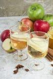 Zumo de manzana orgánico fresco del otoño con las especias Foto de archivo libre de regalías